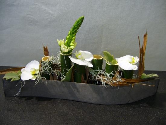 Topfpflanze2