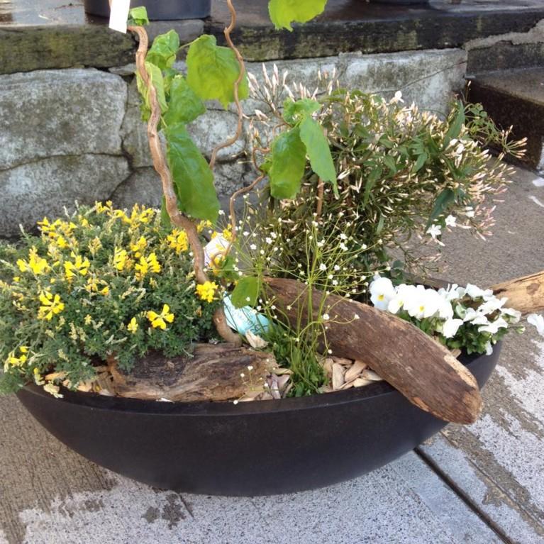 Terrassen Blumen Unterseen Interlaken